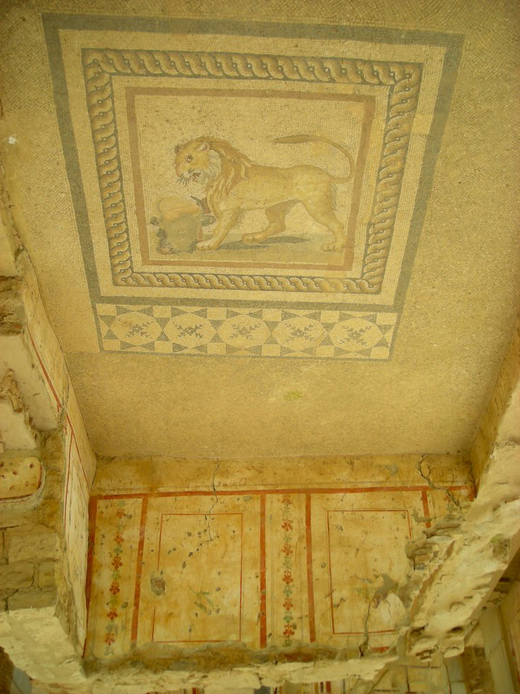 lion_floor